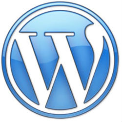 5 dicas para temas WordPress melhores