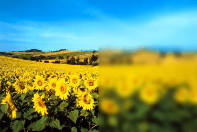 Exemplo de aplicação de filtro CSS3: blur